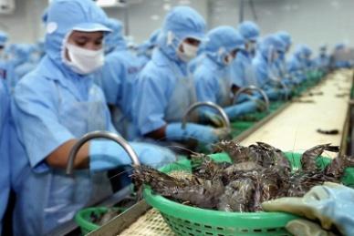 Thủy sản hiện là một trong những mặt hàng xuất khẩu thế mạnh của Việt Nam sang thị trường Đức. Ảnh minh hoạ. Nguồn: Internet