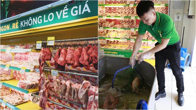 Mô hình thịt tươi cá lội đã giúp Bách hóa Xanh trở thành đơn vị dẫn đầu trong ngành bán lẻ thực phẩm tươi sống.