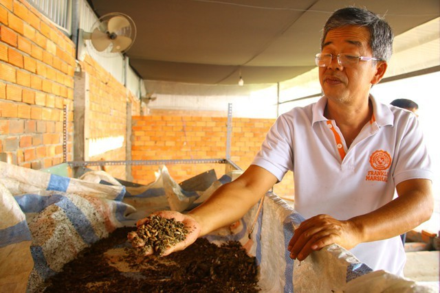 Mỗi tháng, nếu sản xuất hết công suất, trại nuôi ruồi lính đen của ông Dương Hữu Thoại có thể cho ra hơn 5 tấn nhộng ruồi.