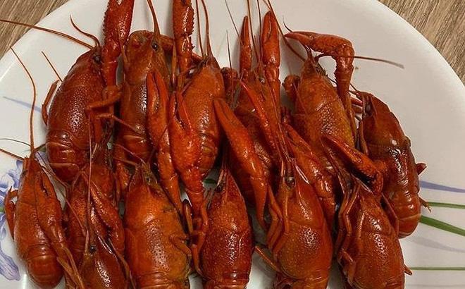 Tôm hùm đất là loài sinh vật ngoại lai, không nằm trong danh mục loài thủy sản được phép kinh doanh tại Việt Nam.