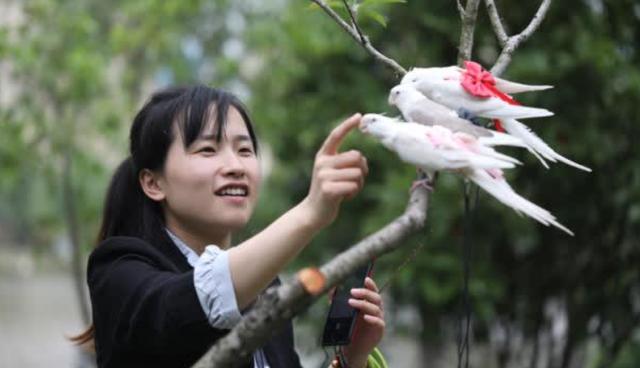 Trịnh Hàm - cô gái 9x với ý tưởng làm bỉm cho chim.