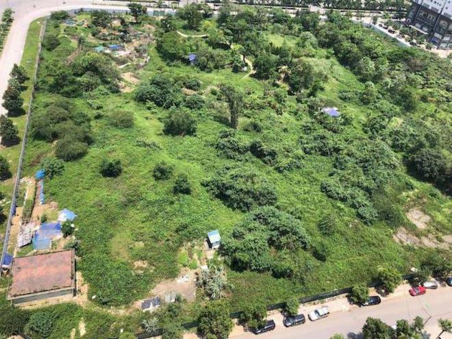 Một ô đất trong khu Đoàn Ngoại giao có công trình trường học hiện vẫn xanh cỏ.