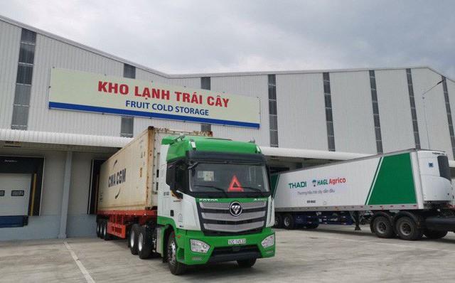 Thaco rót thêm chục nghìn tỷ đồng cho các dự án nông nghiệp, báo tiêu trái cây cho HAGL Agrico.