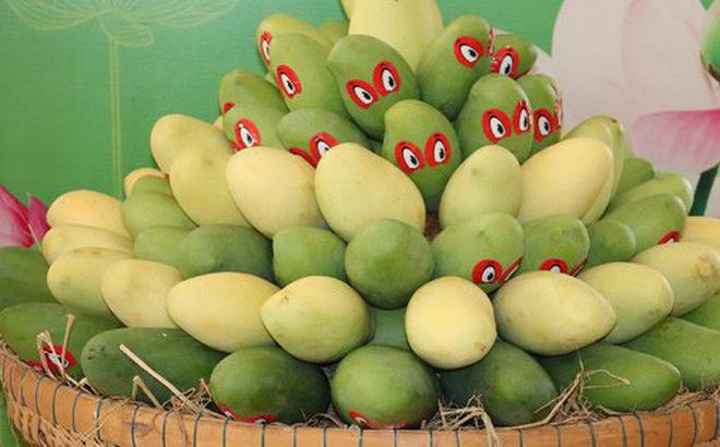 Tiềm năng của quả xoài Việt Nam vào thị trường Hoa Kỳ là rất lớn.