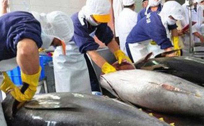 Hiệp hội Chế biến và Xuất khẩu thủy sản Việt Nam (VASEP) đề nghị giữ nguyên số giờ làm việc trong Bộ Luật Lao động sửa đổi là 48 giờ/tuần như quy định hiện hành. (Ảnh minh họa)
