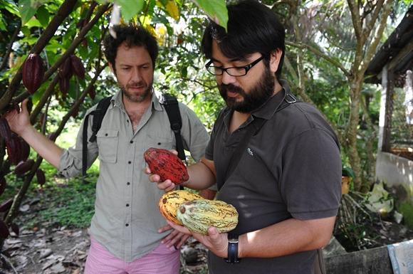 Vincent Mourou (trái) và Sam Maruta (phải) đang xem xét các quả cacao